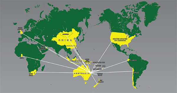 Direct Source Global import export map